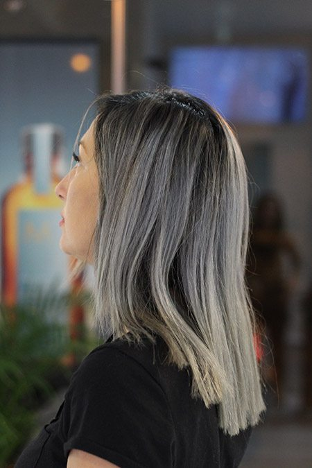 par-vopsit-grey-silver gri